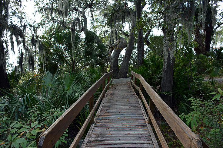A walking path at Fort Mitchel in Hilton Head, SC