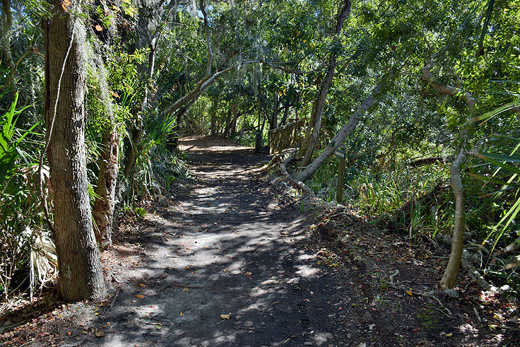 A walking path at Sea Pines Forest Preserve in Hilton Head, SC