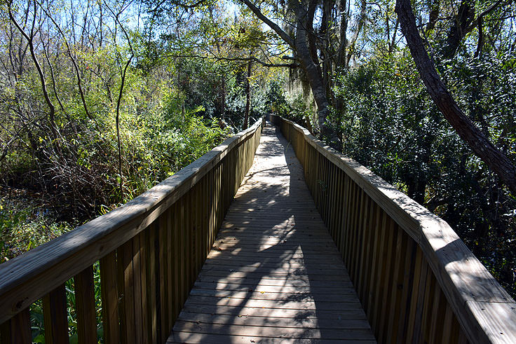 An elevated walkway at Sea Pines Forest Preserve in Hilton Head, SC